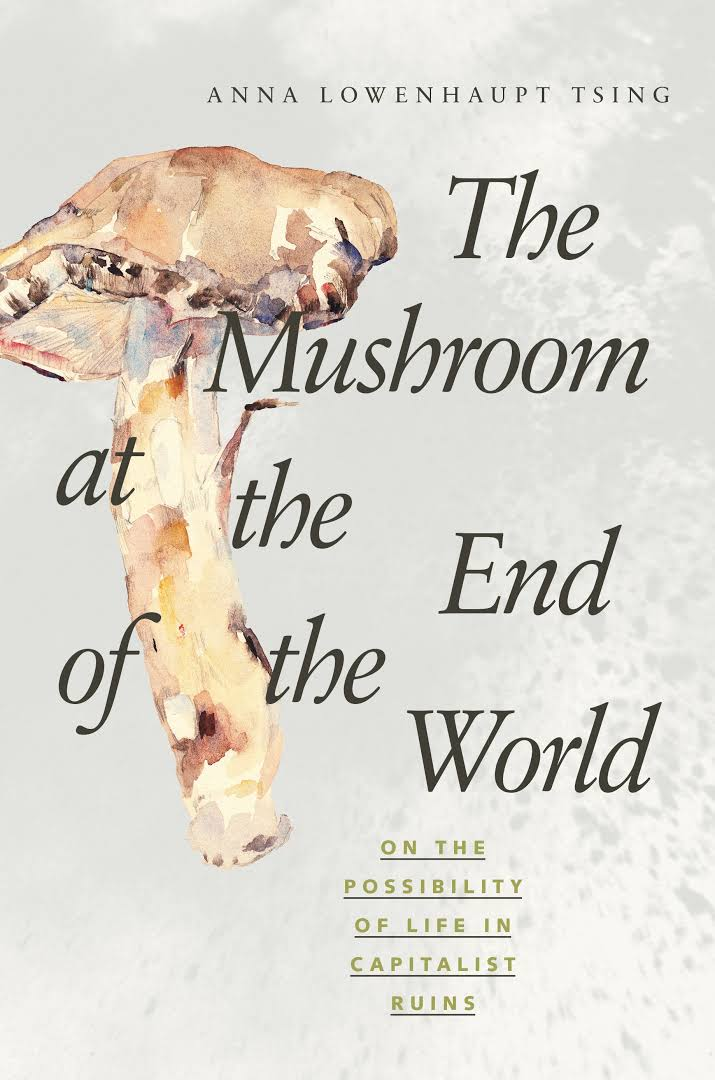 mushroom-book-review-picture