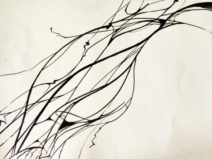 lines3